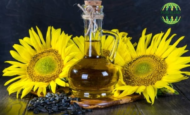 best grade carriers oils use cosmetic formulation