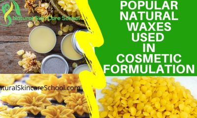 natural vegan waxes organic cosmetic formulation