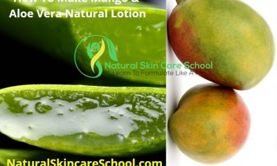 how to make mango aloe vera natural lotion